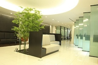 Tokyo Midtown Clinic